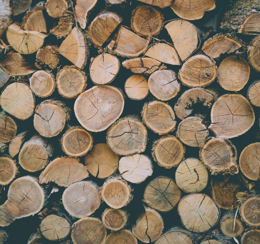 Ekonomiczna sytuacja przemysłu drzewnego w Polsce - krótki zarys
